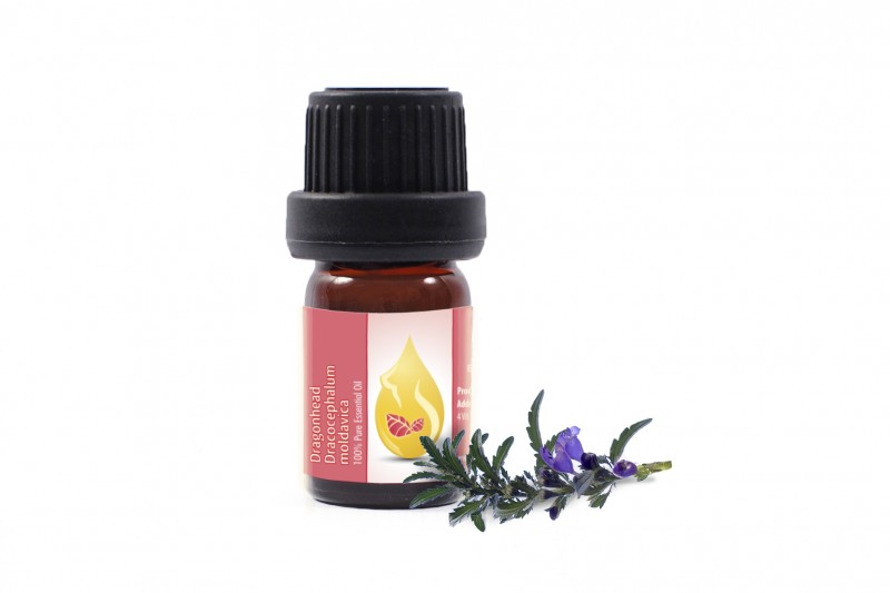 Moldavian Dragonhead - 100% pure and natural essential oil (5ml)