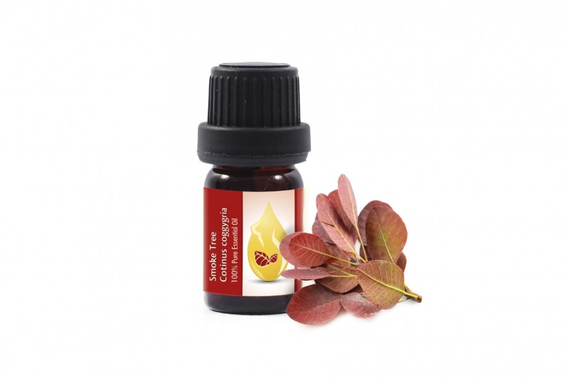Smoke Tree - 100% pure and natural essential oil (5ml)